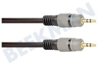 Point Of View BMG202  Jack Cable 2x 3.5mm Stereo Hombre, 2,5 m, Dorado 2.5 Meter, Negro, Oro